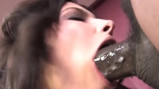 Danica Dillon Loves Interracial Anal Sex